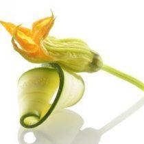 flor de calabacin