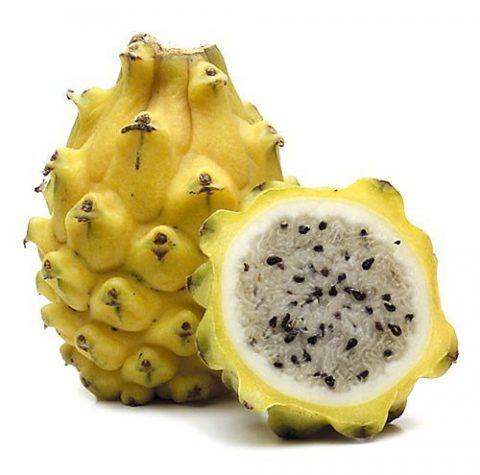 pitahaya amarilla